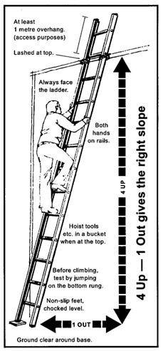 This weeks safety observation topic ladder safety mining man this weeks safety observation topic ladder safety mining man mining leadership safety and technical advice ccuart Images